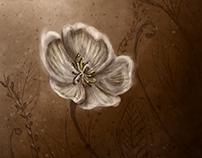 Flores dos