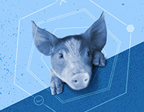 Pig 360 Conference