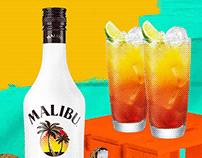 Malibu - Full Door & Banner Ads Animation