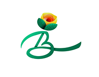 Benazir - Logo Design Proposition