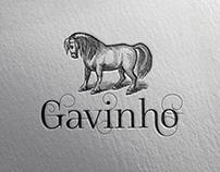 Gavinho | Identidade Visual