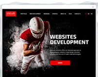 Goldweb Solution - website, character