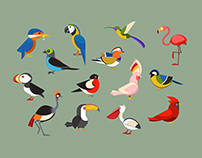 Popular bird species collection.