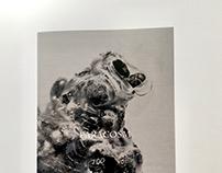 Paracosm Exhibition Booklet