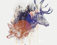 fox & deer