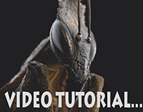 Ghost mantis tutorial