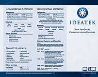 IdeaTek Services Brochure 2013