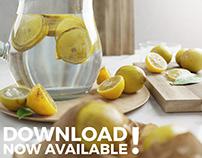 Photorealism Lemon Set