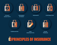 Icon Design for Principles of Insurance