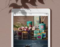 Max Benjamin Website