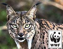 WWF - Ellos te lo agradecen (Activación)