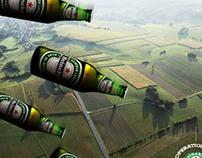Heineken Biere