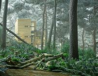 Eco house. Arch.viz