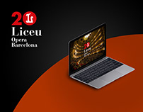 Concurs Tenor Viñas / Gran Teatre de Liceu / Web Design