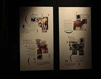 ASL Brescia - exhibition