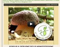 «Sito» Fiera del Fungo di Borgotaro