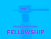 SickKids Fellowship Brochure 2013