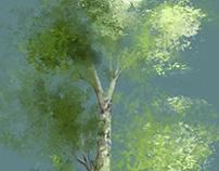 Trees study