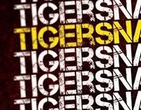 Tigersnake Band Flyer