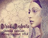 Trend Report- Divina Tendentia
