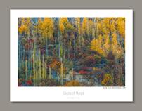 Landscapes Set 1
