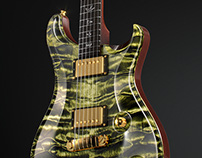Paul Reed Smith - CGI