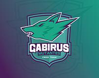 Identidade Visual - Gabirus Mutantes CSGO Team