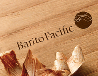 Barito Pacific Corporate Brand Revitalisation