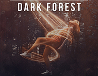 Dark Forest | Artwork