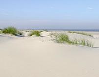 North Sea coast Ameland