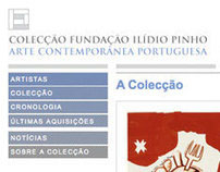Colecção Fundação Ilídio Pinho