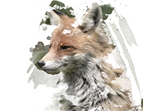 DESIGN / Ink Animal