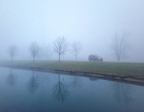 One foggy morning