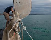 Sailing - Racing the Seas