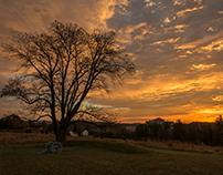 Dawn In November