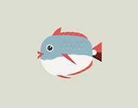 Fish Illustrations Collection