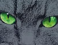 Grey cat - 2015