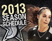 Silver Stars - 2013 Season Branding