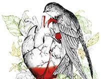 Diseño Colección CARAL DE BOLSILLO e ilustración