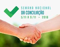 APRESENTAÇÃO Campanha da Conciliação