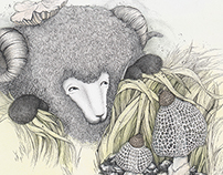 2015 满满羊之我们的旅途| 01-06