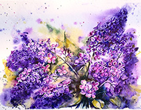 Birthday Lilac in watercolor