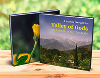 A journey through the valley of Gods - Palampur