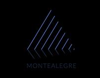 Identity Logo Animation