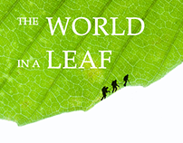 The World in a Leaf