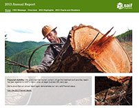 SAIF 2013 Annual Report