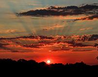 SSS (Stu Stu Studio) Sunsets