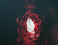 /ˈhɑːtˌbiːts/ - Heartbeats