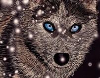 Illustrating a Siberian husky