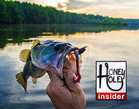 Honey Hole Fishing Forecast banners